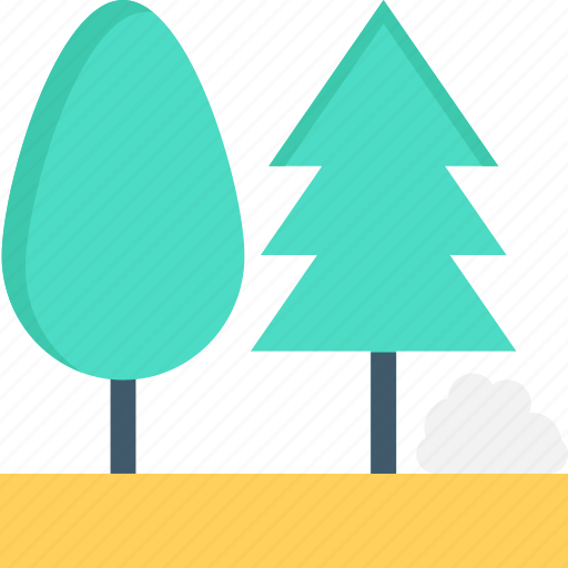 cypress, evergreen trees, fir, trees, two trees icon