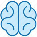body part, brain, head, human, human brain, mind, organ icon