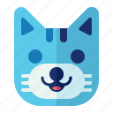 animal, cat, kitty, pet, pussy icon