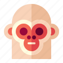 animal, circus, face, monkey icon