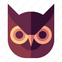 owl, bird, animal