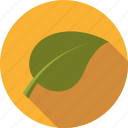 environment, leaf, nature, plant icon