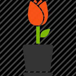 botany, flora, flower, plant, pot, sprout, tulip icon