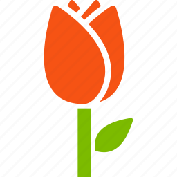 botany, floriculture, flower, greenery, nature, plant, tulip icon