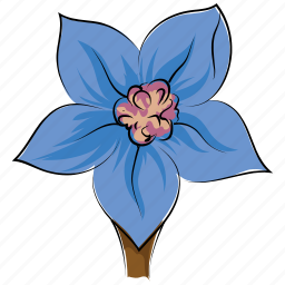 bellflower, blossom, bluebell, bluebell flower, flower, freshness, summer icon