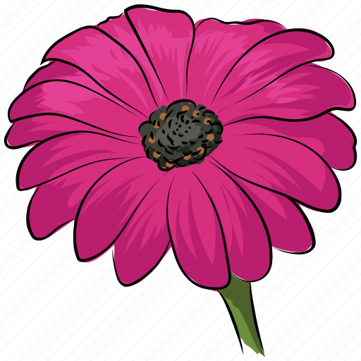 Image result for pink gerber daisy clip art
