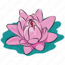 flower, lotus, lotus flower, pond, summer, water, waterlily icon