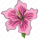 azalea, azalea flower, beautiful, beauty, flower, pink, pink azalea icon