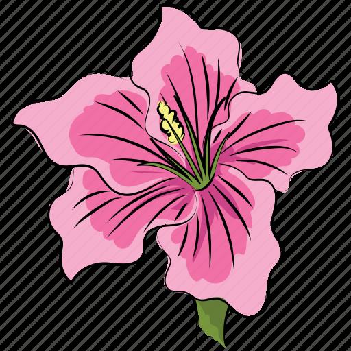 Azalea Azalea Flower Beautiful Beauty Flower Pink Pink Azalea Icon
