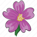anemone, bloom, flower, natural, petal, seasonal, spring icon