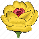 decoration, flower, greeting, rose, rose flower, yellow, yellow rose icon