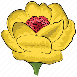 decoration, flower, greeting, rose, rose flower, yellow, yellow rose icon