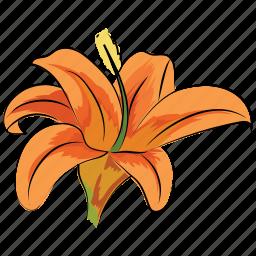 alstroemeria lavender, flower, lily, peruvian lily, season, spring, trumpet-shaped icon