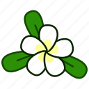 ecology, environment, flora, flower, plant, plumeria, spa icon
