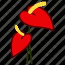 anthurium, environment, flower, garden, plant, florist, nature icon