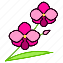 environment, flower, garden, orchid, plant, blossom, nature icon