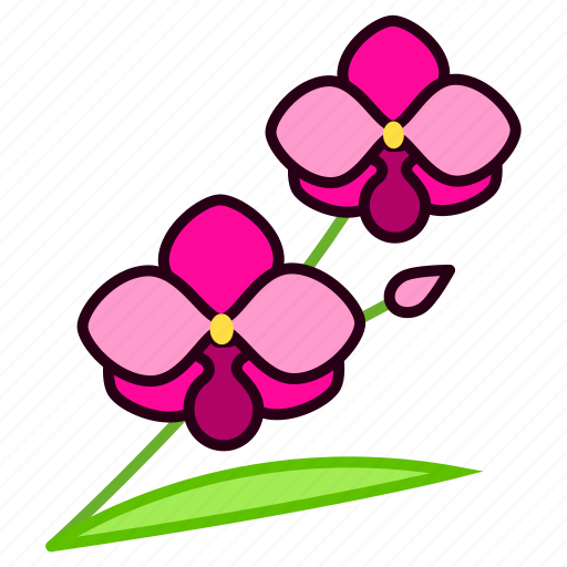 blossom, environment, flower, garden, nature, orchid, plant icon