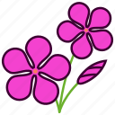 environment, flower, flowers, garden, plant, rosea, vinca rosea icon