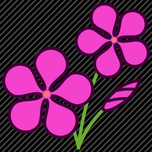 environment, flower, flowers, garden, plant, rosea, vinca rosea icon
