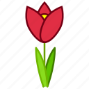 bloom, ecology, environment, flower, garden, plant, tulip icon