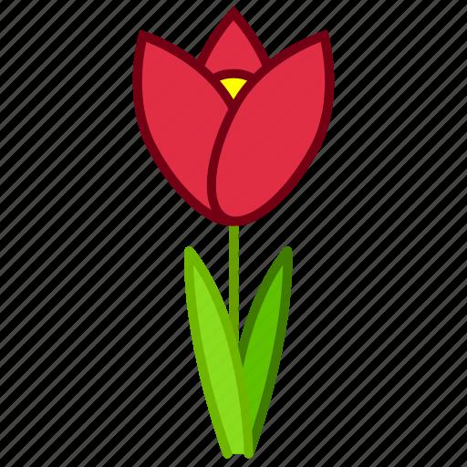 bloom, ecology, environment, flower, garden, plant, tulip icon