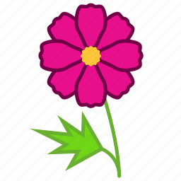 aster, ecology, environment, flower, garden, plant, romance icon