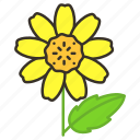 ecology, environment, floral, flower, garden, plant, wedelia icon