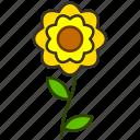 environment, flower, garden, plant, zinnia, eco, flowers