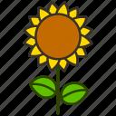 environment, flower, garden, nature, plant, sunflower icon