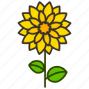 dahila, ecology, environment, flower, garden, plant icon