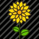 dahila, ecology, environment, flower, garden, plant icon