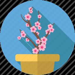 flower, flowers, garden, sakura icon