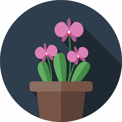 flower, flowers, garden, orchids, plant icon