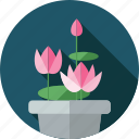 flower, flowers, garden, lotus, plant icon