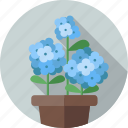flower, flowers, garden, hydrangea, plant icon