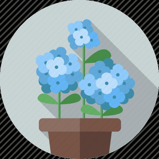 flower, flowers, garden, hydrangea, plant icon