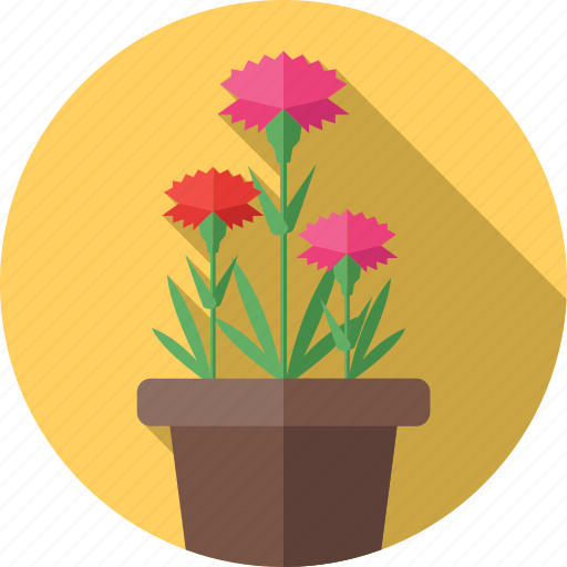 carnation, decoration, flower, flowers, plant icon