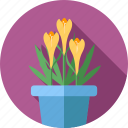 flower, flowers, garden, lily, plant icon