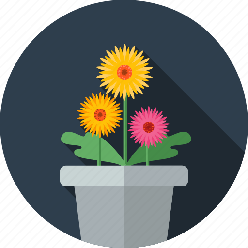 flower, flowers, garden, gerbera icon