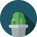 cactus, flower, flowers, garden, plant icon