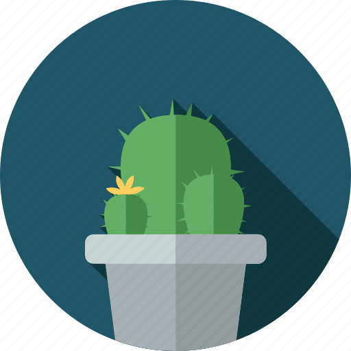cactus, flower, flowers, garden, plant icon