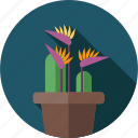 banana flower, flower, flowers, garden, plant icon