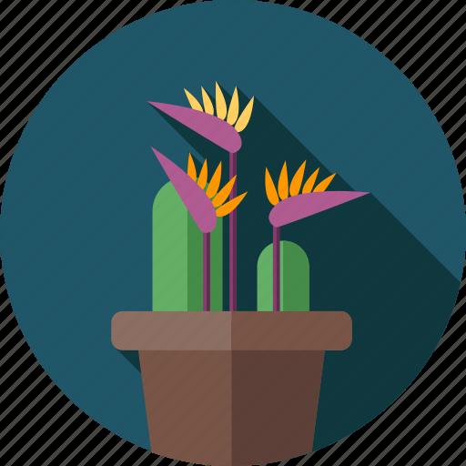 banana flower, flower, flowers, garden, plant icon