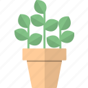 flowerpot, home decor, nature, plant icon