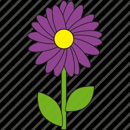 beauty, darkviolet, flower, nature, summer icon