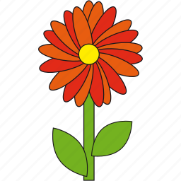 beauty, flower, nature, orange, red, summer icon