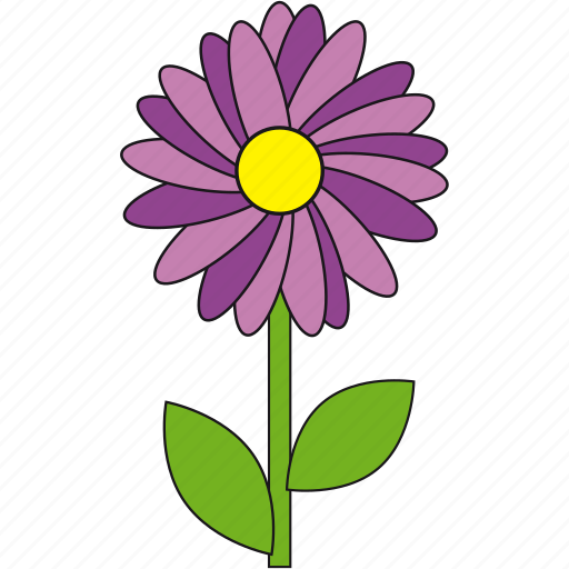 beauty, flower, flowers, nature, summer, violet icon