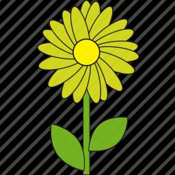 beauty, flower, lightgreen, nature, summer icon