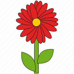 beauty, flower, nature, red, summer icon