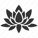 bloom, floral, flower, lotus, nature, plant, water plant icon